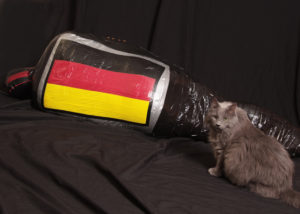 german cat